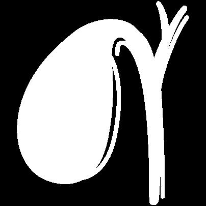 Gallbladder-White-29