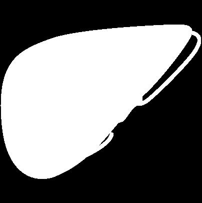 Liver-White-28